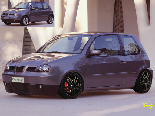 seat arosa cupra september 2004 warehouse hammer 39 s. Black Bedroom Furniture Sets. Home Design Ideas