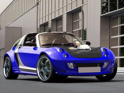 smart roadster 2 smart catalogue hammer 39 s virtual tuning magazine. Black Bedroom Furniture Sets. Home Design Ideas